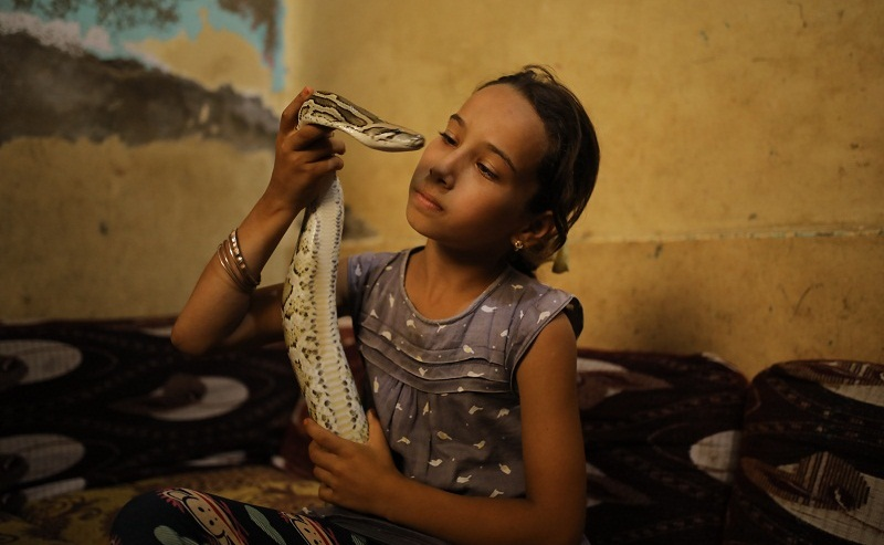 Snake Wrangler Egyptian