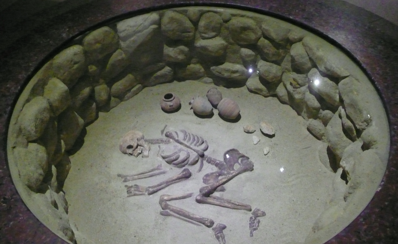 Second Oldest Skeleton in the World