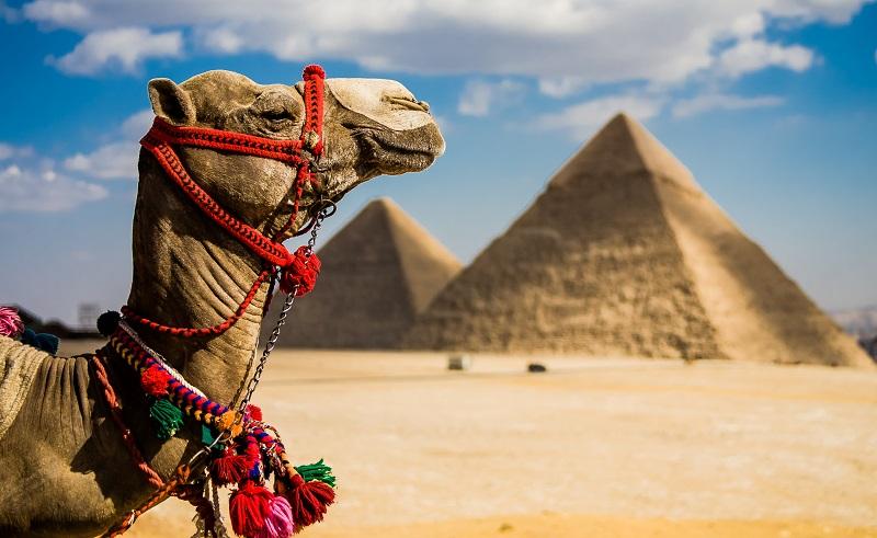 Egyptian pyramids tourism