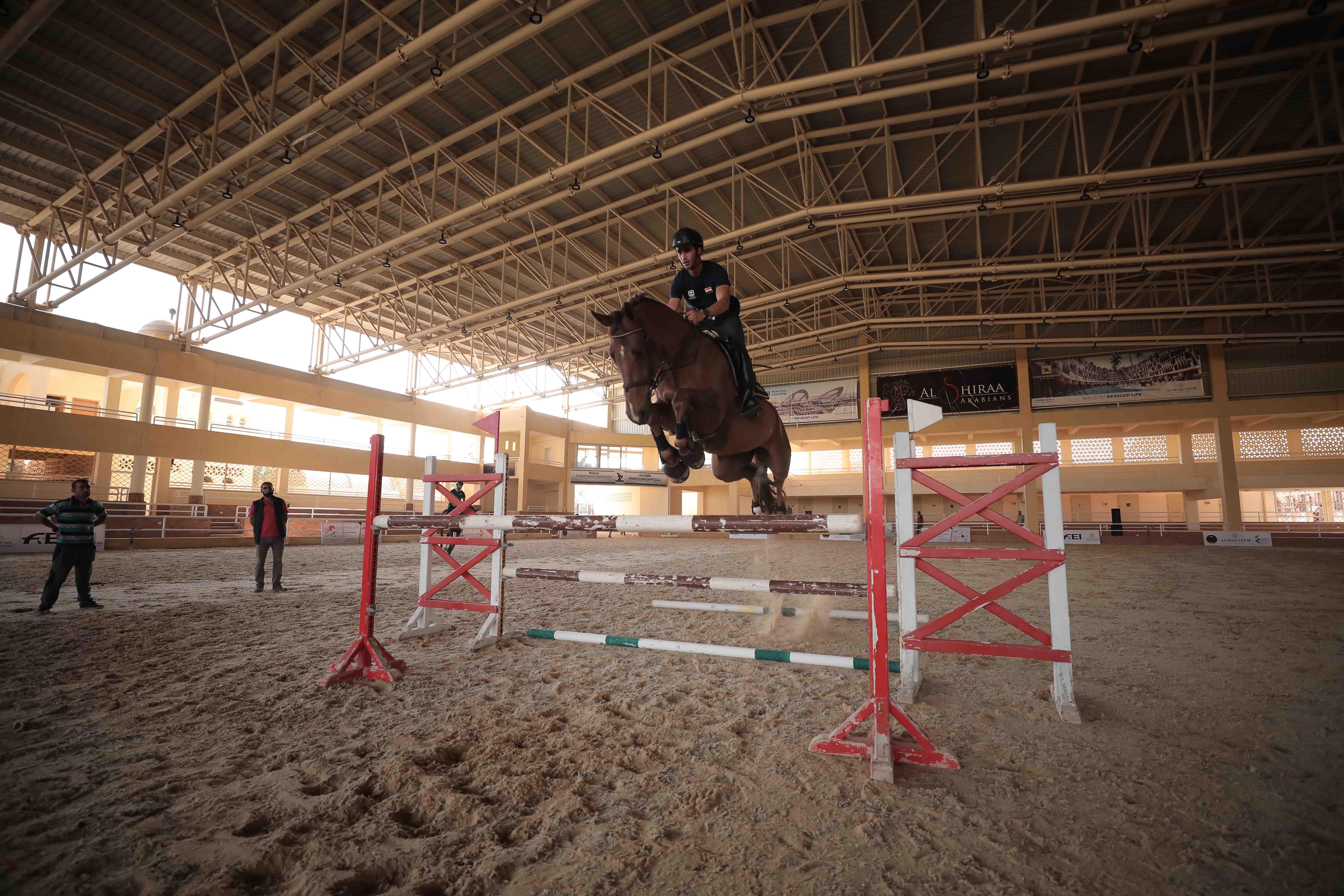 egyptian equestrian