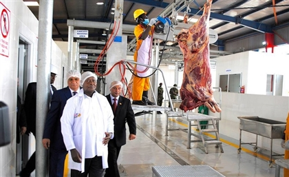 Egypt to Begin Importing Premium Beef from Uganda