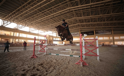 Meet the Egyptian Equestrian Riding to the 2020 Tokyo Olympic Games