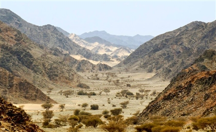 Gebel Elba: Visit Egypt's Best Kept Secret