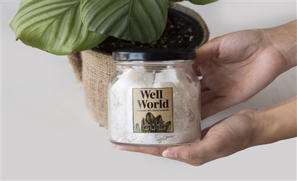 Local Brand Well World Makes Sustainable All-Natural Homecare Products