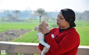 Mervat Said: The Egyptian Woman Who Became the Guardian Angel of Cairo's Stray Animals