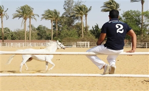 Mohamed Fahim: Egypt's Hope for Polo