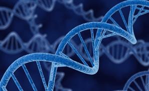 Egypt: the Hub Of Genetics?