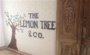 The Lemon Tree & Co