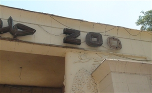 Giza Zoo: Park or Prison?