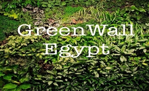 GreenWalls Egypt: Breathing Life Into Living Spaces