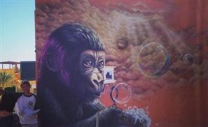 Paint the Town: Gouna Gets Graffitied