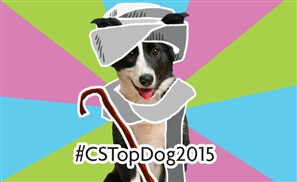 Is Your Dog This Year's #CSTopDog2015?
