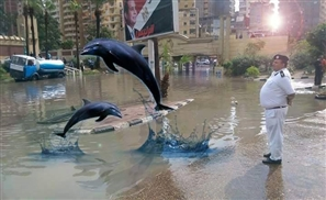 8 Times Egyptians Let Their Imaginations Rain Wild