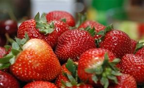 Egypt Ships Hepatitis Infected Strawberries to America?