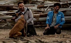 Junkyard Dog: Battling Stereotypes in 'Kalb Baladi' (2016)