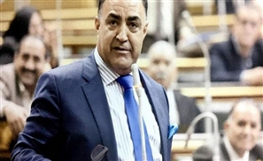 National Council for Women Fighting Against Egyptian MP for Misogynistic Statements