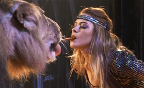 Egypt's Foremost Lion Tamer Anosa Kouta: Walking Against the Moral Stampede