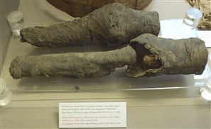 Could These Mummified Legs Found in Italy Belong to a Dismembered Queen Nefertari?