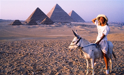 Swiss Tourists Rescue An Egyptian Donkey for 800 Euros and Fly It Back With Them