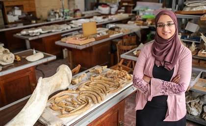 Meet The Egyptian Paleontologist Behind the Mansourasaurus Discovery