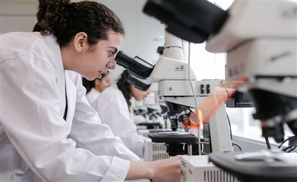 Egypt to Create a Database of Egyptian Scientists Living Abroad