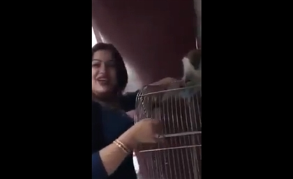 Graphic Video: Egyptian Woman Arrested for Sexually Abusing Monkey