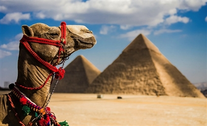 Egypt's Pyramids Were One of the Most Requested Destinations in the World by Uber Riders in 2018