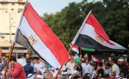 'Egyptian Expats Conference' to be Held in Cairo This Summer