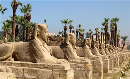 Ministry Begins to Move Four Sphinxes from Karnak Temple to Tahrir Square