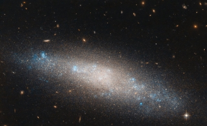 NASA Hubble Features Constellation Named After Egyptian Queen Berenice II