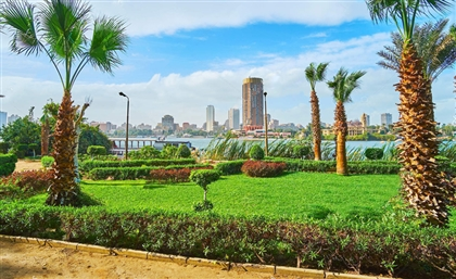 Egypt Joins 'Platform for Redesign 2020' to Tackle Climate Change and COVID-19