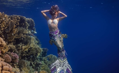 Swim with Dolphins (& Mermaids) on this Girls-Only Trip