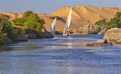 Nile International Swimming Championship Returns to Aswan this October