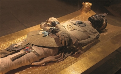 Oldest Skeletons in Egypt to Be Displayed at NMEC in Fustat