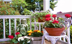 Intro to Gardening Class to Make Balconies Bloom
