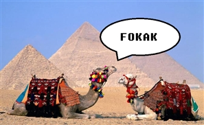 10 Words That Should Be in Egypt's Urban Dictonary