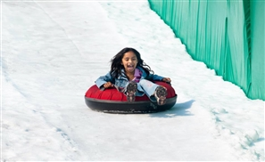 Ice Kingdom To Open at Sun City