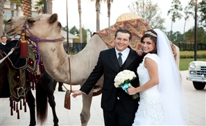 Only at Egyptian Weddings