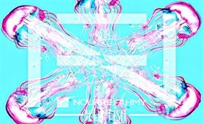 Sahel Select: Nour Fahmy - Jellyfish