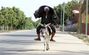 Man Tries to Enter Polling Station on Donkey on First Day of Parliamentary Elections