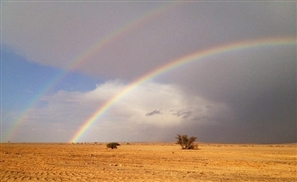 Rainbow Gathering Egypt: A Meeting of The Tribes