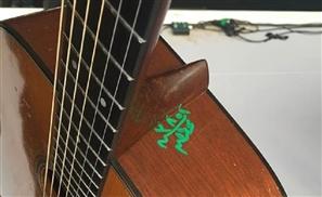 Cairo Airport Customs Vandalise Bryan Adams' Guitar