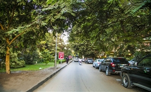 Are Authorities Shutting Down Cafes on Maadi's Road 9?