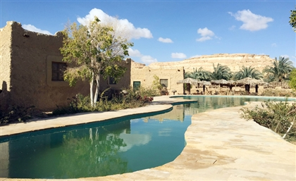 Egypt's Siwa Oasis Named Global Centre for Medical and Environmental Tourism