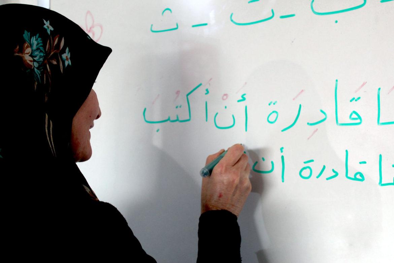 egypt illiteracy