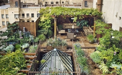 Rooftop Gardens to be Planted Across Cairo as Part of New Citywide Initiative