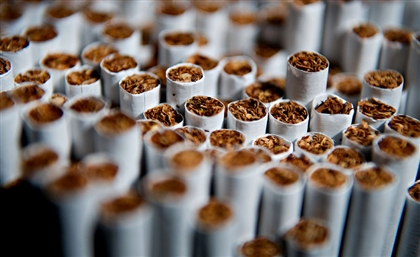 Middle East's First Observatory for Tobacco Control to Be Established in Egypt