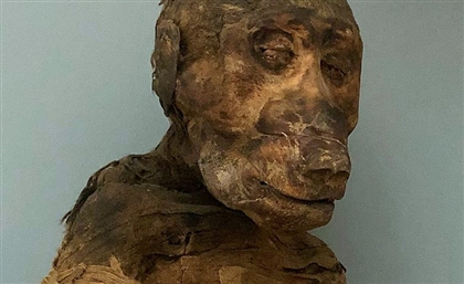 Can These Baboon Mummies Lead the Way to the Mythical 'Land of God'?