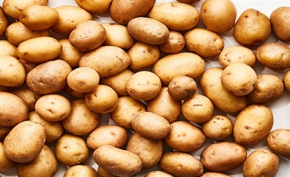 Egypt's Potato Exports Already Reach 90,000 Tons in 2021