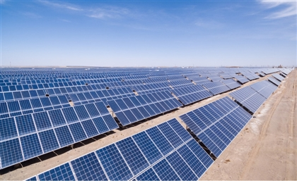 World Bank's MIGA to Invest in Egypt's Green Development